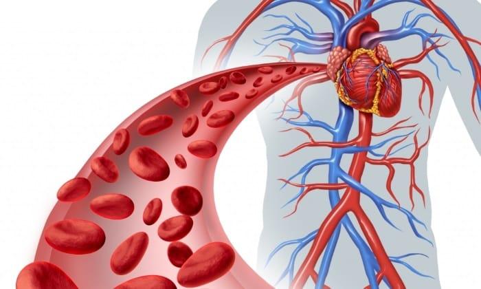 Медикамент робить позитивний вплив на роботу кровоносної системи, його ефективність давно доведена