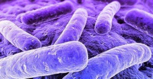Мікоплазма геніталіум ознаки діагностика і лікування урогенітального мікоплазмозу
