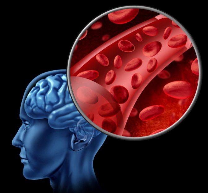 мозковий кровотік
