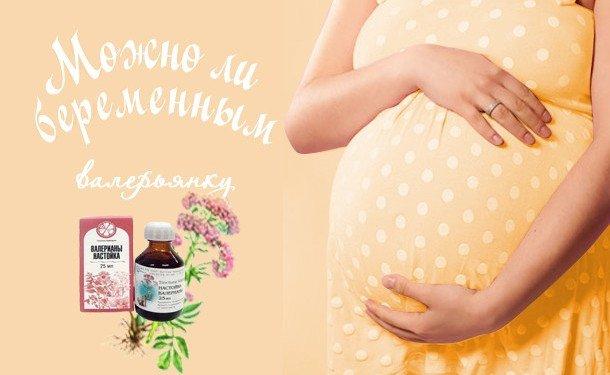 Чи можна вагітним Валер'янку