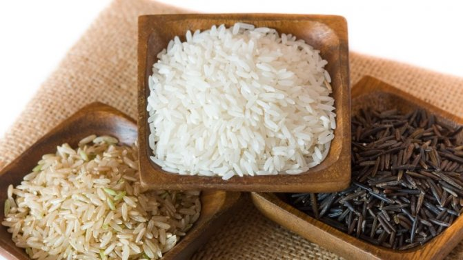 Чи можна їсти рис при гастриті: аргументи за і проти, вибір сорту, відповідні рецепти