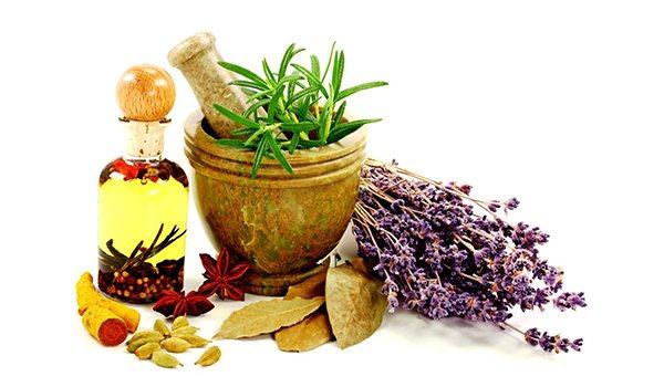 Народна медицина в профілактіці захворювань травної системи