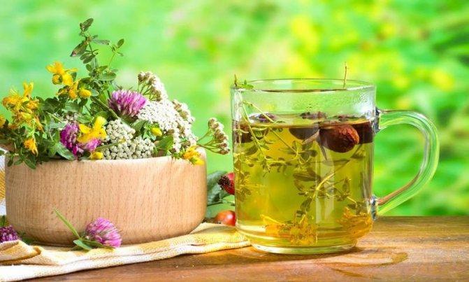 Народні засоби і трави при атеросклерозі судин головного мозку