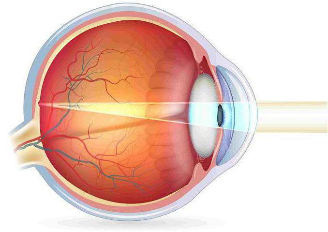 порушення акомодації ока
