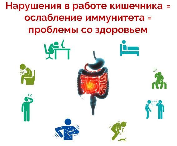 Порушення в роботі кишечника = ослаблення імунітету = проблеми зі здоров'ям