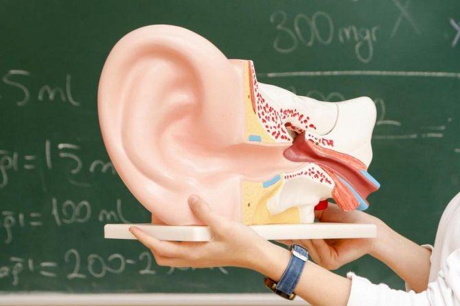 нейросенсорна втрата слуху двостороння