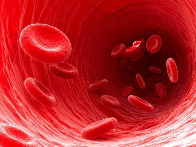 Норма еритроцитів в сечі у жінок. Таблиця, причини підвищених знижених, лікування