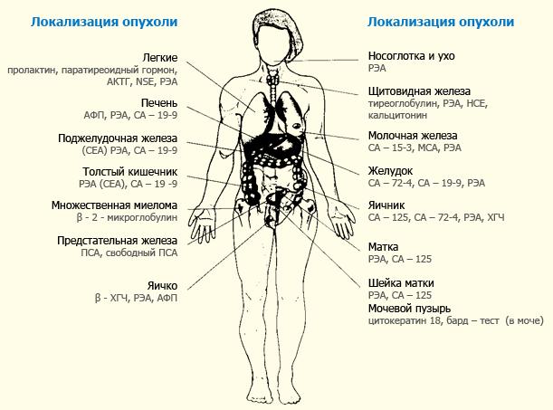 онкомаркери