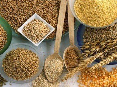 основні злаки - пшоно, рис, пшениця, кукурудза, ячмінь
