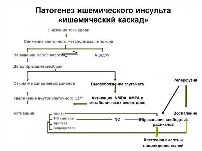 патогенез інсульту