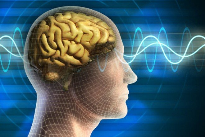 патології мозку