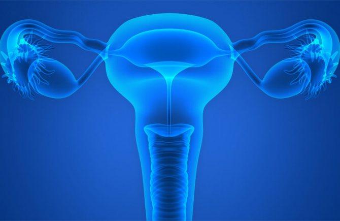 патології яєчників і прогестерон
