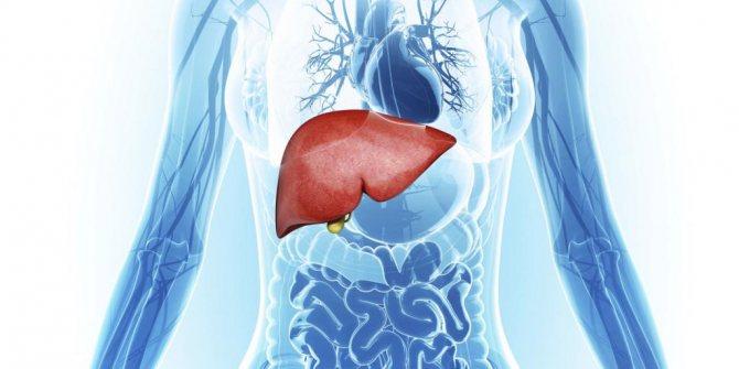 Печінкова енцефалопатія стадії