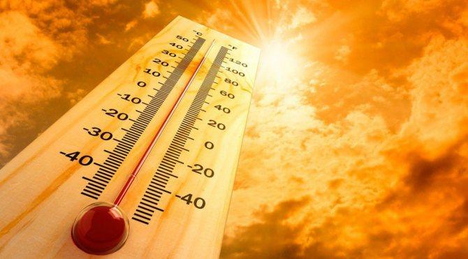 перепади температури повітря, сонце, вітер