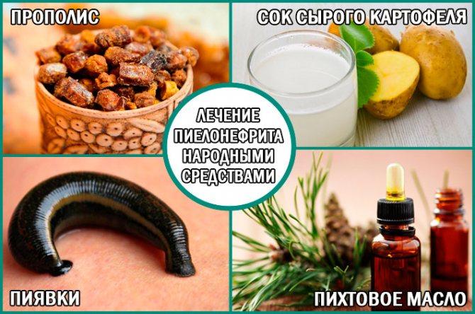 Пієлонефрит: лікування народними засобами