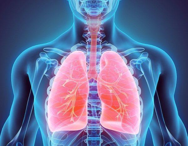Пневмонія. Схема лікування у дорослого, антибіотики, народні засоби, ліки