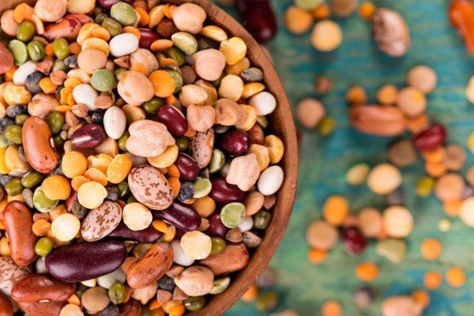 Підготовка до УЗД нирок що не можна їсти