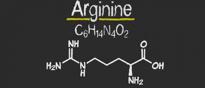 користь аргініну