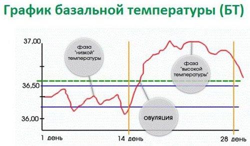 Знижена температура тіла