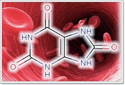 Підвищений вміст сечовини в крові