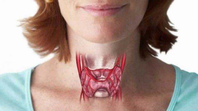 Препарати для профілактики захворювань щитовидної залози