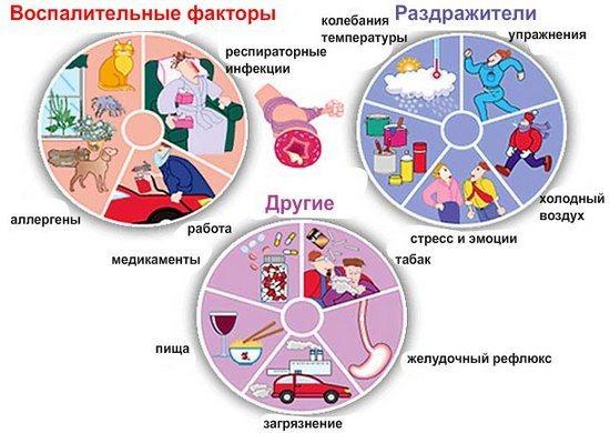 Причини розвитку астми