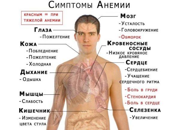 Присмак заліза в роті. Що це означає, причини, від чого може бути вранці, після кашлю, на мові, губах, якщо нудота