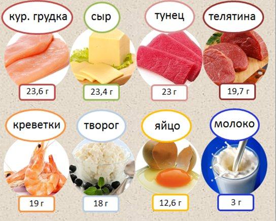 продукти підвіщують Загальний білок в крови