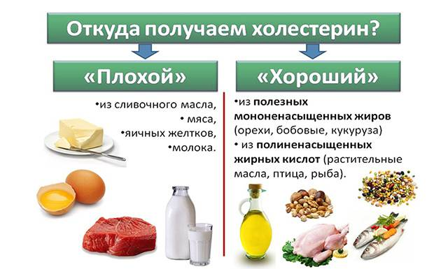 Продукти з корисних и шкідлівім холестерином