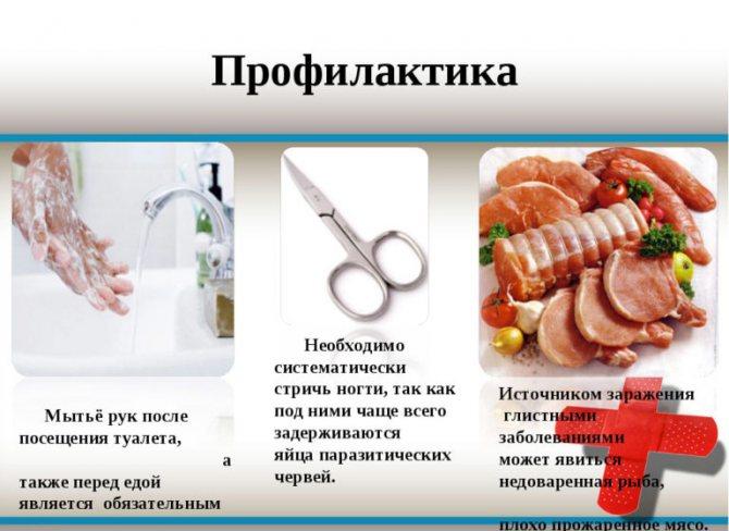 профілактика глистів