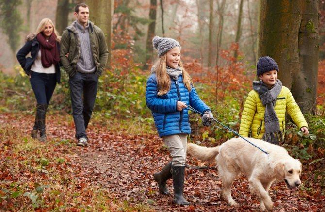 Прогулянки на свіжому повітрі від кашлю