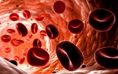 Розшифровка показників складу крові
