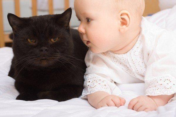 дитина з котом