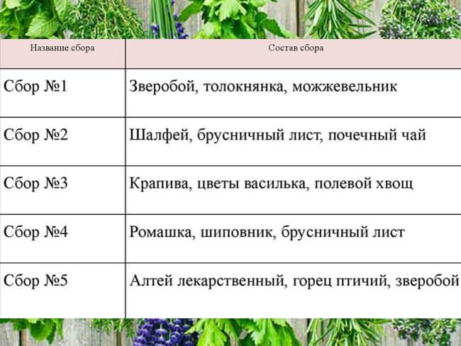 Рецепти трав'яних зборів для нірок