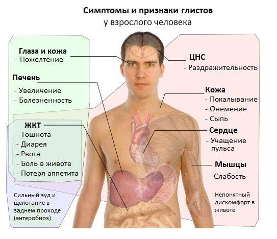 Симптоми глистів у дорослої людини