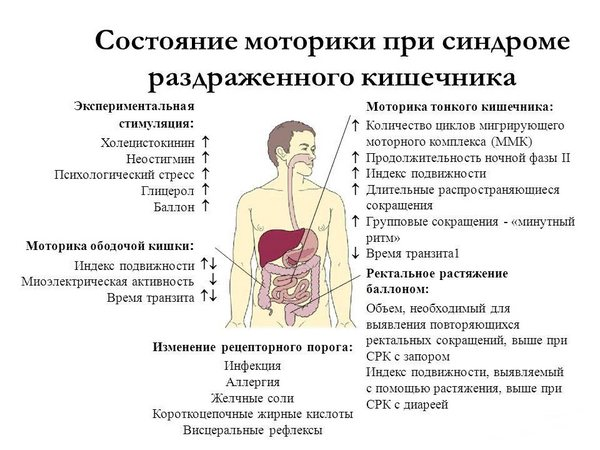 Стан моторики при синдромі подразненого кишечника