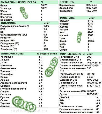Спіруліна. Лікарські властивості, для чого і як приймати, протипоказання