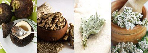засоби народної медицини: чорна редька, аїр, листя шавлії, трава деревію