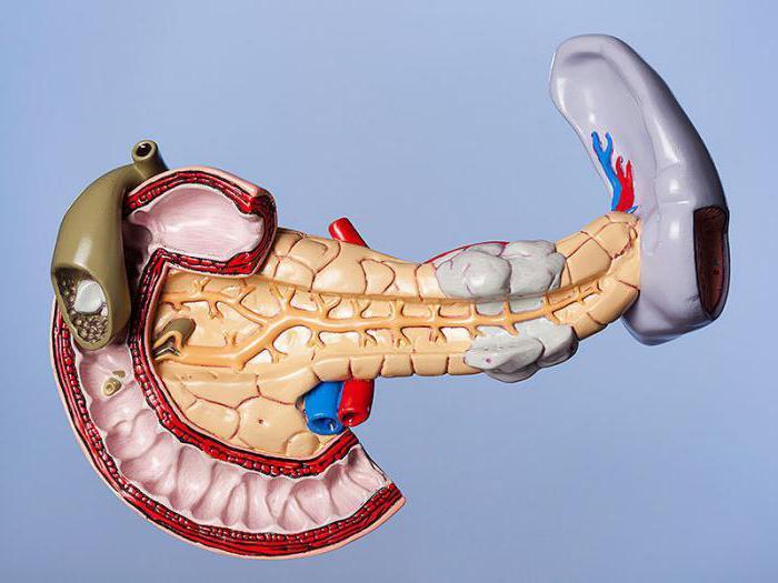 стеатоз підшлункової залози