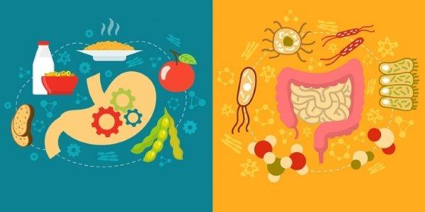 Строго дотримуйтесь дієті, Щоб не запускаті захворювання.  Інакше, гастрит Швидко перейшовши в віразку и даже можливий ризики раку шлунка.