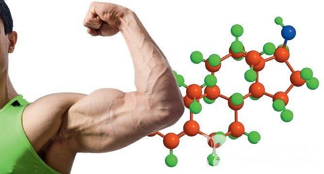 Тестостерон відповідає за чоловічі статеві ознаки, а також бере участь у формуванні кісток і м'язів