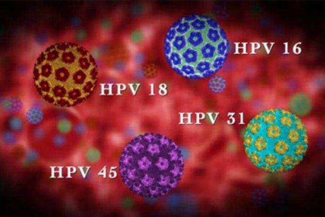 типи ВПЛ високого канцерогенного ризики