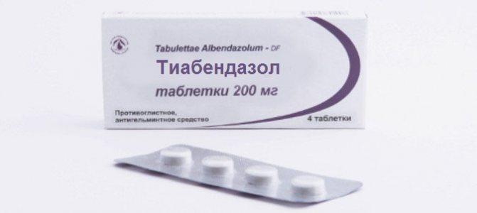Токсокароз у дорослих Симптоми и лікування