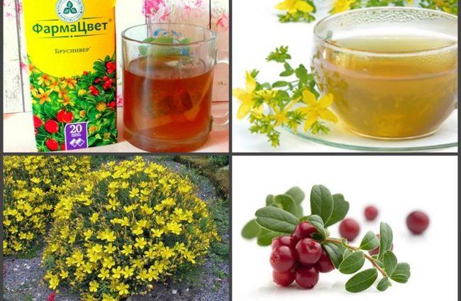 трав'яний чай бруснівер