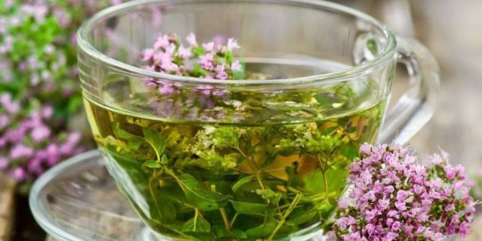 Трав'яний чай з шавлією в чашці