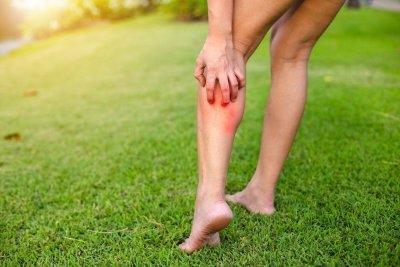 Тромбоз. Тромбофлебіт вен нижніх кінцівок. Лікування і симптоми тромбозу і тромбофлебіту.