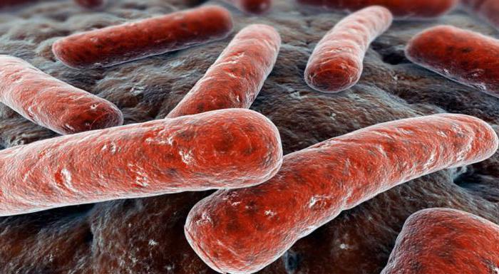 туберкульоз симптоми перші ознаки