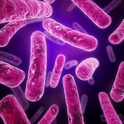Туберкульоз у майбутньої мами