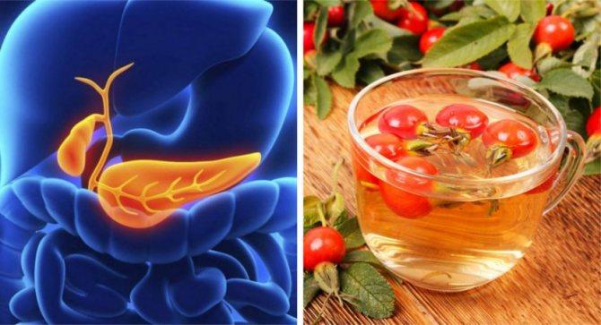 Вживання шипшини при холециститі