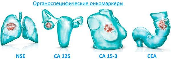 види онкомаркерів